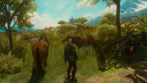 Witcher3Toussaint1